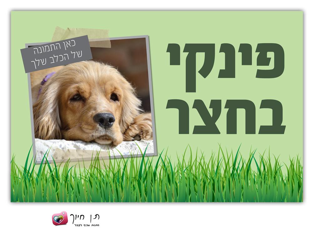 שלט כלב בחצר עם תמונה דגם 1