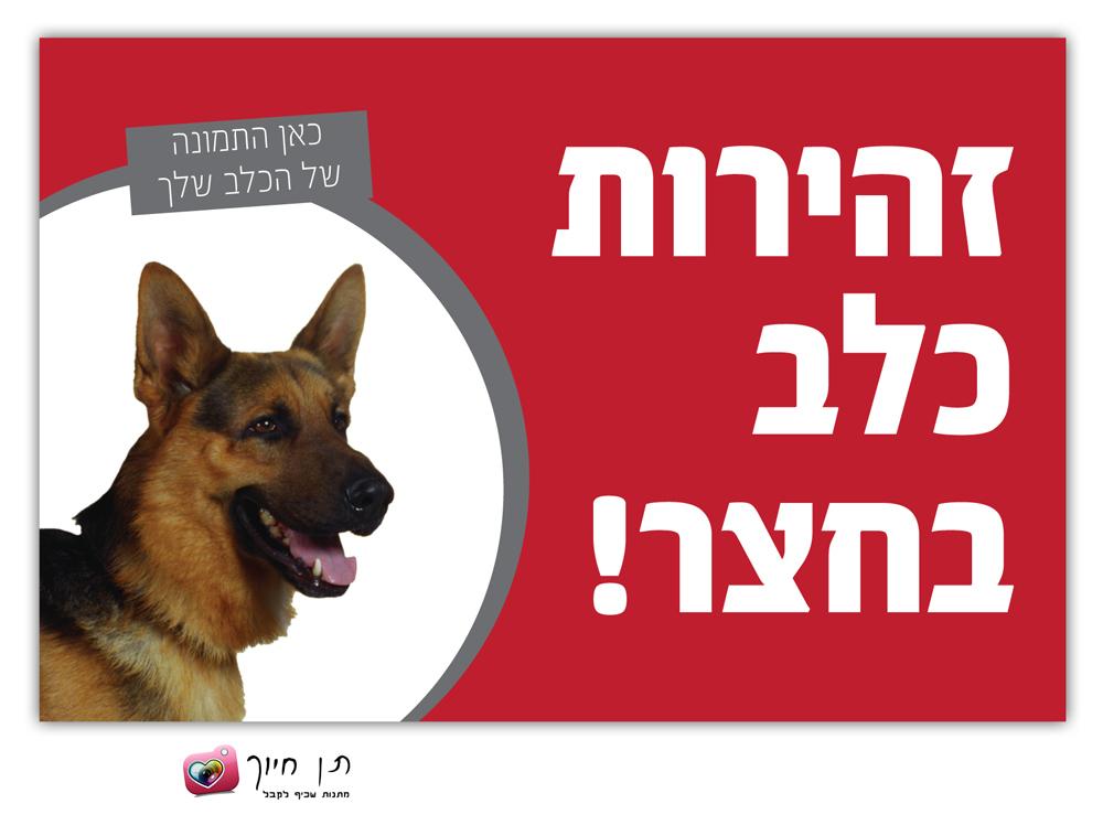 שלט כלב בחצר עם תמונה דגם 3