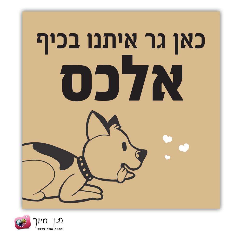 שלט כלב בחצר דגם 6