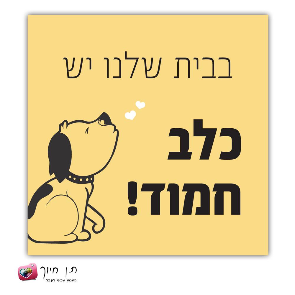 שלט כלב בחצר דגם 7