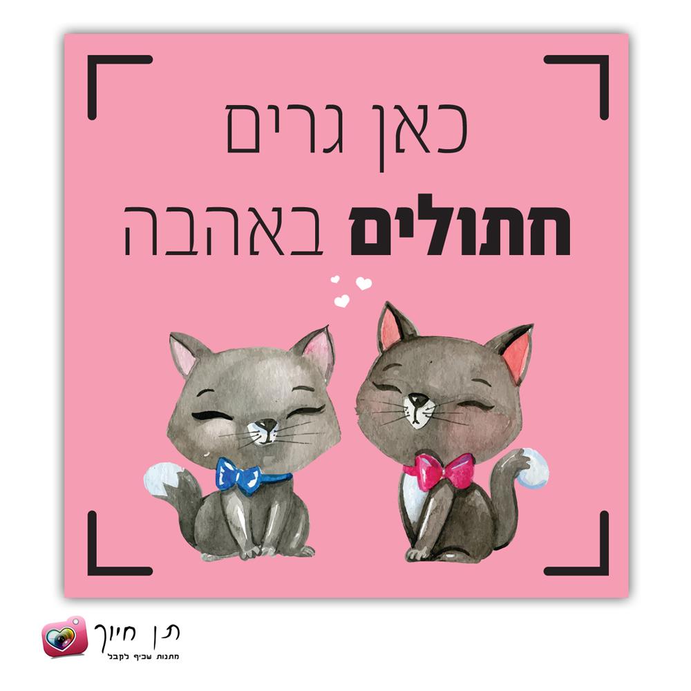 שלט חתול בחצר דגם 10