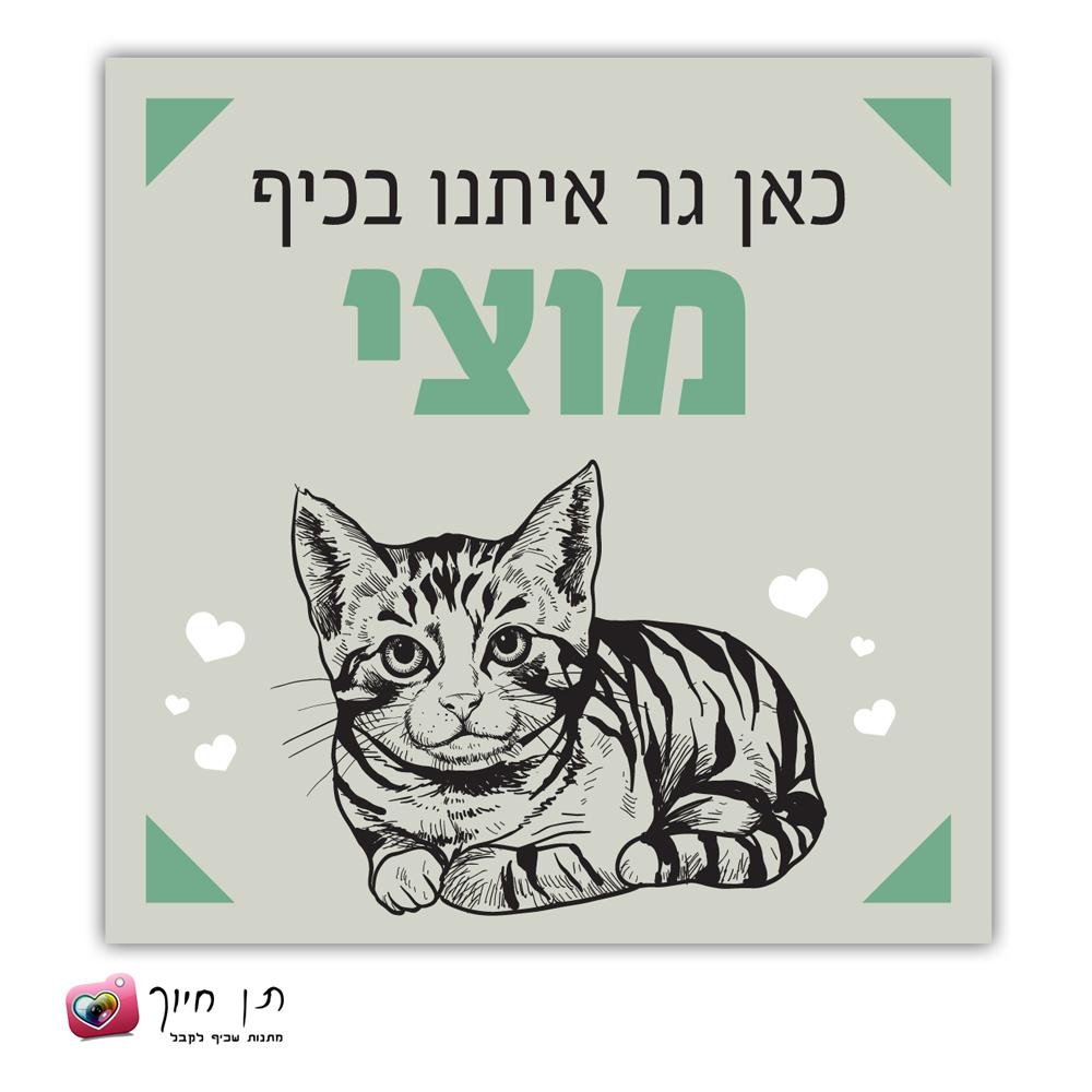 שלט חתול בחצר דגם 9
