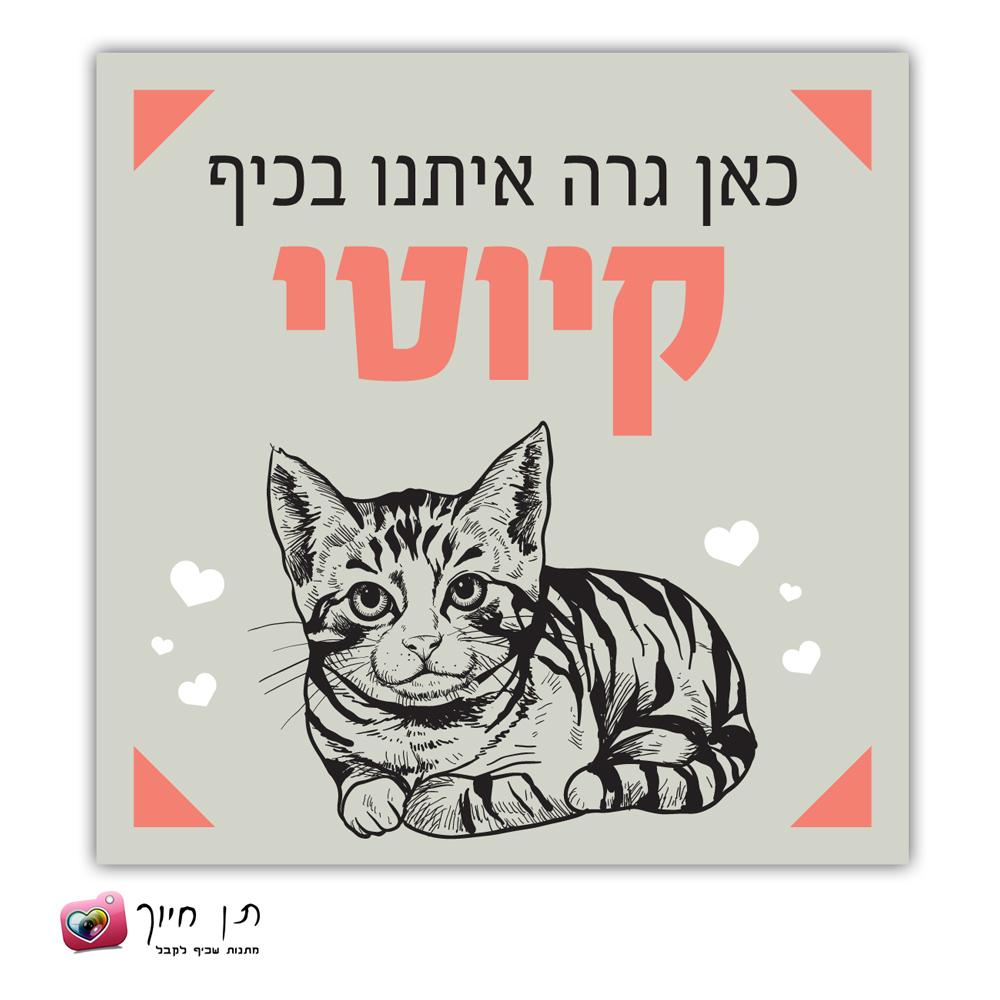 שלט חתול בחצר דגם 11